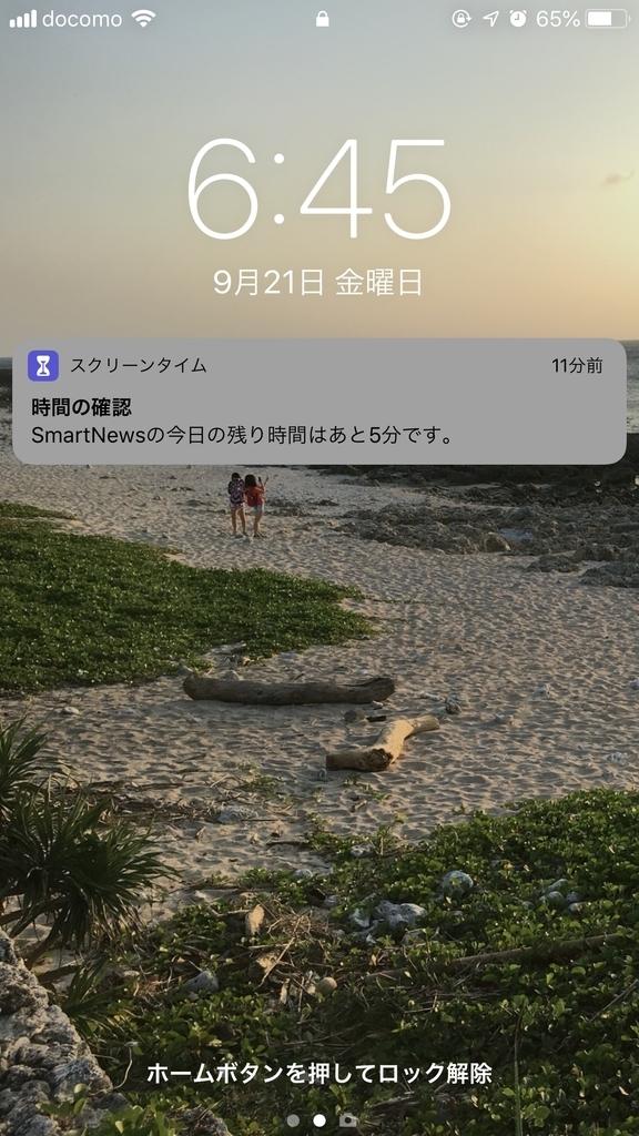 f:id:yuji-hy:20180921231932j:plain